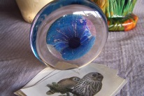 https://www.etsy.com/listing/468714019/robert-eickholt-glass-paperweight-signed?ref=shop_home_active_23