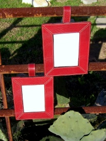 https://www.etsy.com/listing/268174549/faux-reptile-picture-frames-5-x-7-red?ref=shop_home_active_9