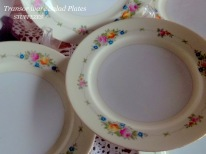 https://www.etsy.com/listing/235125930/transor-ware-salad-plates-pale-beige?ref=shop_home_active_14